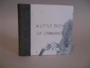 A Little Book of Drawings